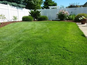 lawn care services Braselton