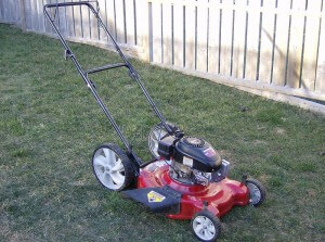 lawn mowing services Braselton